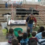 3-R and 3-W  Life on the farm 032