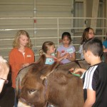 3-R and 3-W  Life on the farm 063