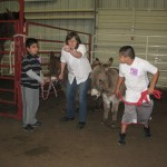 3-R and 3-W  Life on the farm 065