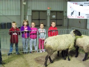 2016 April 15 Kindergarten to the baby animal farm 025